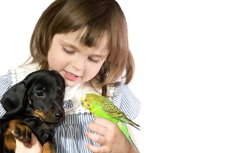 The beautiful little girl holds Parrot and dog on white background close up Stock Photo - 4645152