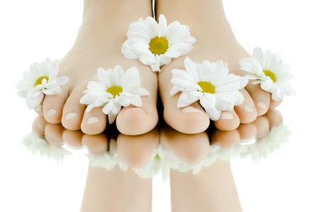 the pretty female legs with fowers, on white background, isolated, close up Stock Photo - 9649213