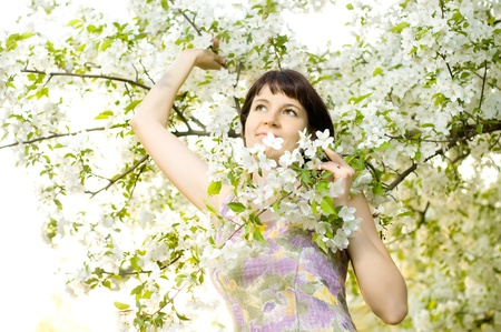 belle: The mature beautiful woman, with bush blossoming apple-tree, smiles Stock Photo