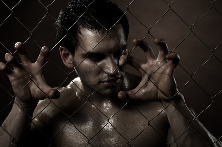 the very muscular handsome felon guy ,  out of netting   steel fence Stock Photo - 11386177