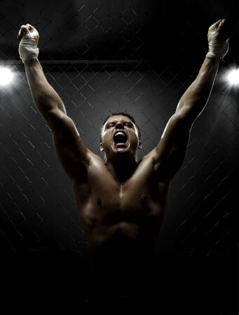 vertrical photo  muscular young  guy street-fighter,  triumphant cries  yell , hard light Stock Photo - 12228950