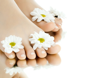 the pretty female legs with fowers, on white background, isolated, close up photo