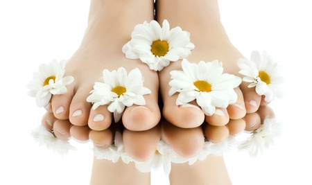 human toe: the pretty female legs with fowers, on white background, isolated, close up