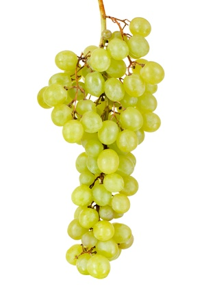 bacca: still life single green bunch of grapes close up, on white background, isolated