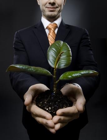 rubber plant: vertical photo  businessman in black costume with  scion  rubber plant