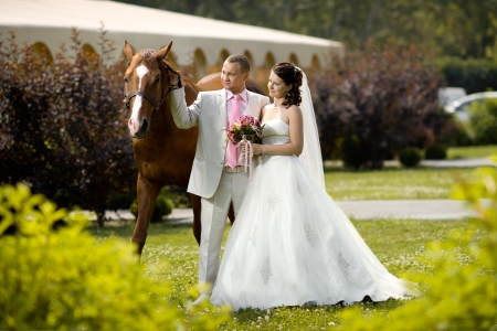 newly married couple stand with beautiful big horse on nature, summer sunny day photo
