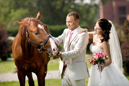 newly married couple stand with beautiful big horse on nature, summer sunny day Stock Photo - 14627935