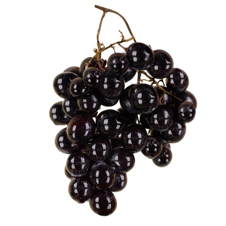bacca: still life single black bunch of grapes close up, on white background, isolated