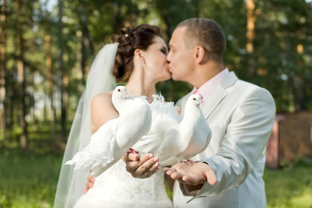 happy newly married couple with two white  pigeon, kiss outdoor