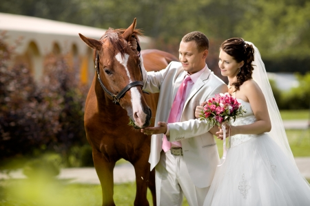 newly married couple stand with beautiful big horse on nature, focus on horse 版權商用圖片