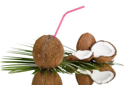 stilllife: still-life of  coconut with  olive-branch on white background, isolated