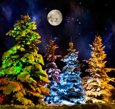 starlit: beautiful Christmas firtree with resplendent multicoloured garland onn starlit- night  background