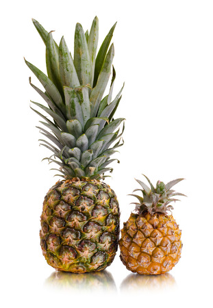 citrous: still life single pineapple close up, on white background, isolated
