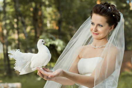 horizontal wedding portrait beautiful  fiancee in white dress with white  pigeon, on nature photo