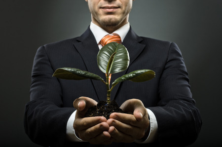 solicitude: human hands  close  with  scion  rubber plant, business concept Stock Photo