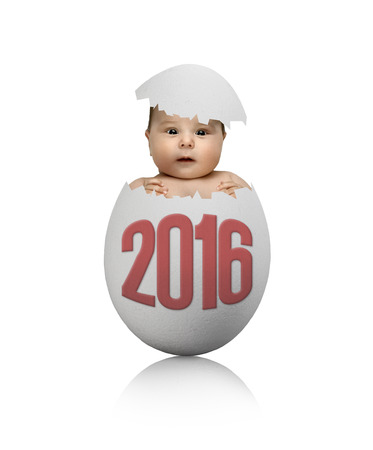 one white egg with baby, on grey background, hatching 2016 New Year concept photo