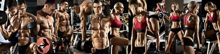 muscle: culturismo, ejecutar el ejercicio con peso, en el gimnasio, horizontal panorama, collage de la foto