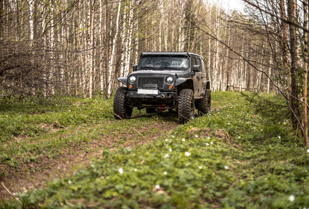 expedition: off-road extreme expedition on black jeep wrangler, in woodland