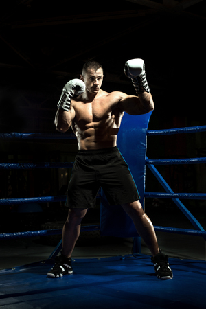 boxer on boxing ring, black bacground, vertical photo