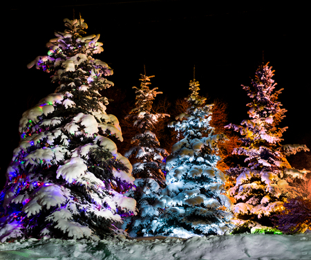 lambent: beautiful Christmas firtree with resplendent multicoloured garland onn starlit- night  background