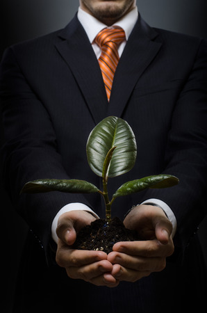 portrait businessman in costume with scion rubber plant Stock Photo