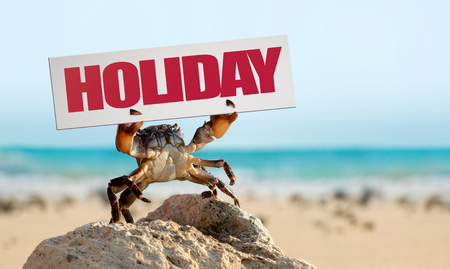 wild crab bricklayer stand and threateningly lifted claws up with board on sea coast background, holiday travel concept