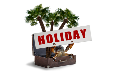 crab hold banner with text holiday on seashore sitting in vintage suitcase with palm tree, holiday concept, on white background, isolated