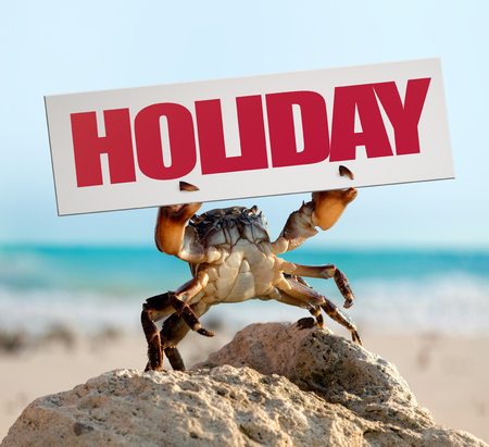 wild crab bricklayer stand and threateningly lifted claws up with board on sea coast background, holiday travel concept Reklamní fotografie - 117852522