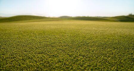 green short grass lawn, fresh cutting lawn-mower, horizontal photo