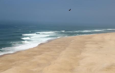 Wild beach in Nazare village, Portugal  photo