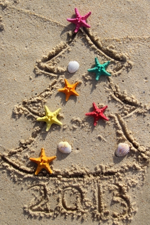 Funny beach Christmas tree decorated with the sea stars and shells Standard-Bild