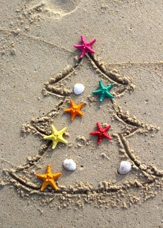 海の星およびシェルで飾られた面白いビーチ クリスマス ツリー 写真素材