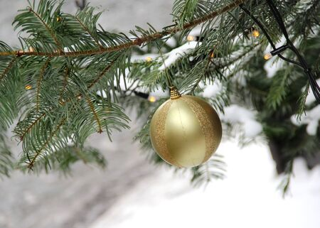 Street Christmas tree decorated with the golden ball Stock Photo - 16887502