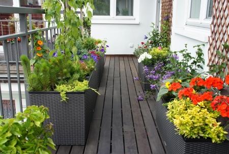 Modern beautiful luxury terrace with a lot of flowers  Standard-Bild