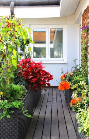 Modern beautiful luxury terrace with a lot of flowers  photo