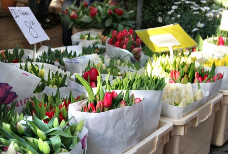 Flower market in Amsterdam with a lot of flowers photo