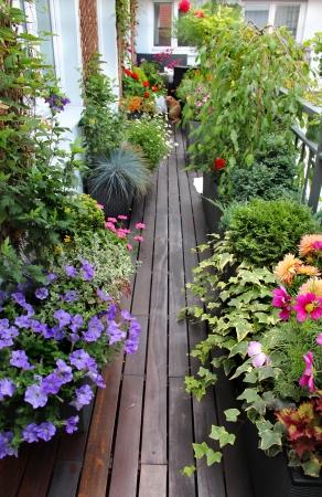Moderne Immobilien Haus Terrasse mit vielen Blumen