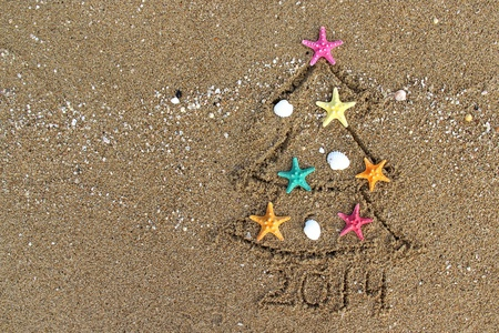 クリスマスと新年 PF 2014 ビーチで