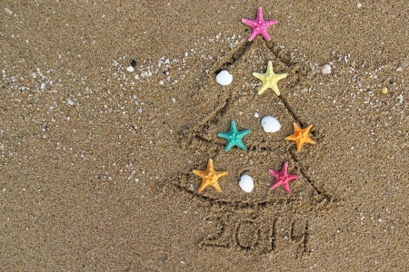 Christmas and New Year PF 2014 on the beach