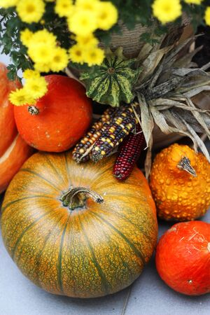 Fall terrace decorations with pumpkin, lot of flowers and other decor objects Stock Photo