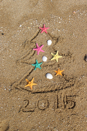 Funny beach Christmas tree decorated with the sea stars and shells Stock Photo