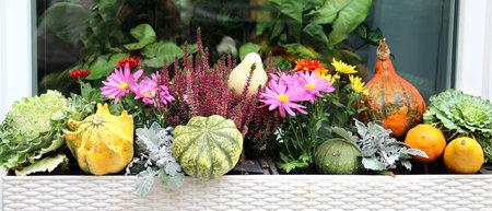 テラス ガーデンの美しい秋の装飾のミックス