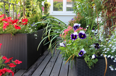 summerhouse: Beautiful modern terrace with seasonal summer flowers