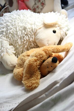 soft toys: Mix of vivid soft toys in the children room