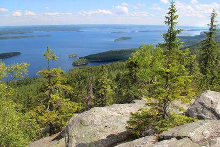 Schöne Natur des Nationalparks Koli, Finnland