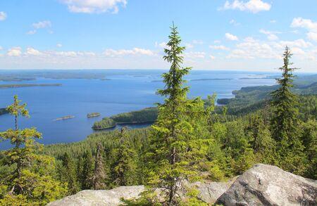 suomi: Nature of national pak Koli, Joensuu, Finland