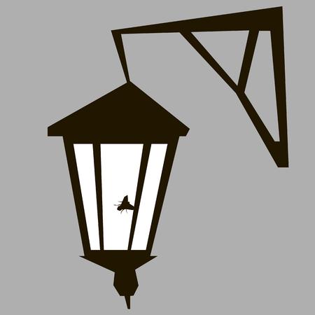 streetlight: a fly sitting on the old streetlight