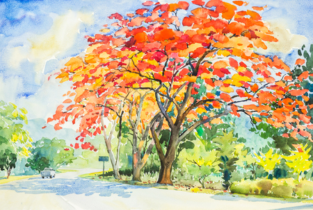 watercolor original landscape painting red, orange color of peacock  flowers tree in sky and cloud background Stock Photo