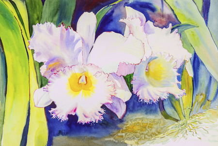 flourishing: Watercolor original painting purple,pink color of orchid  flowers  and green leaves of blue color background