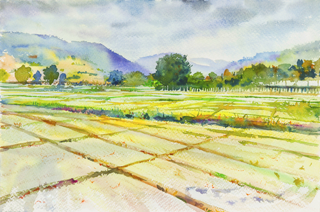 Watercolor landscape painting  cornfield and mountain of emotion in clound background .Original painting.